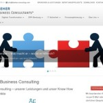 Website von Dreher Business Consulting